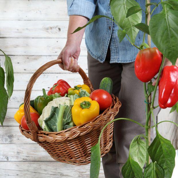 Mejora tu salud visual comiendo verdura