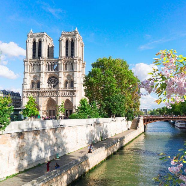 Las propuestas más locas para la reconstrucción de Notre Dame