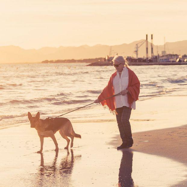 Las mejores playas caninas de las Islas Canarias