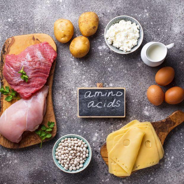 Cuántos aminoácidos esenciales hay y cuáles son sus funciones
