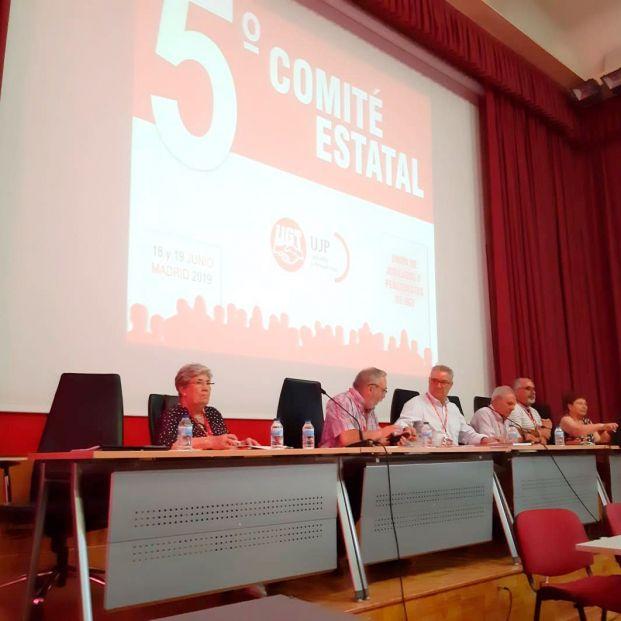Comite Estatal UGT-UJP
