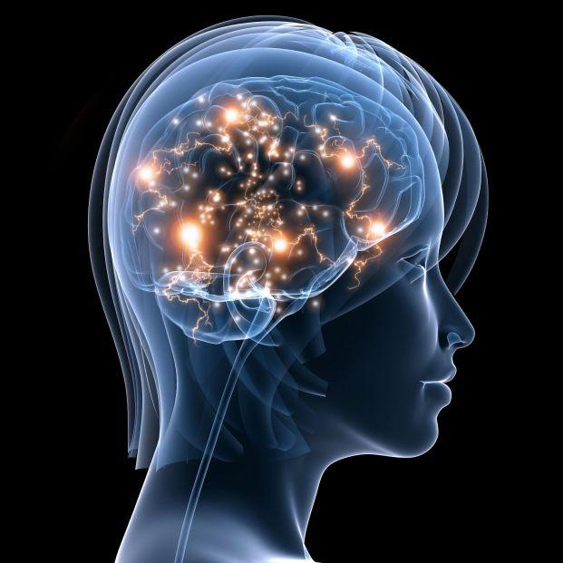 El cerebro de la mujer envejece más tarde que el del hombre