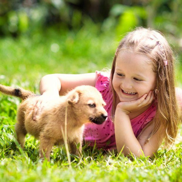Beneficios de que tus nietos crezcan con una mascota