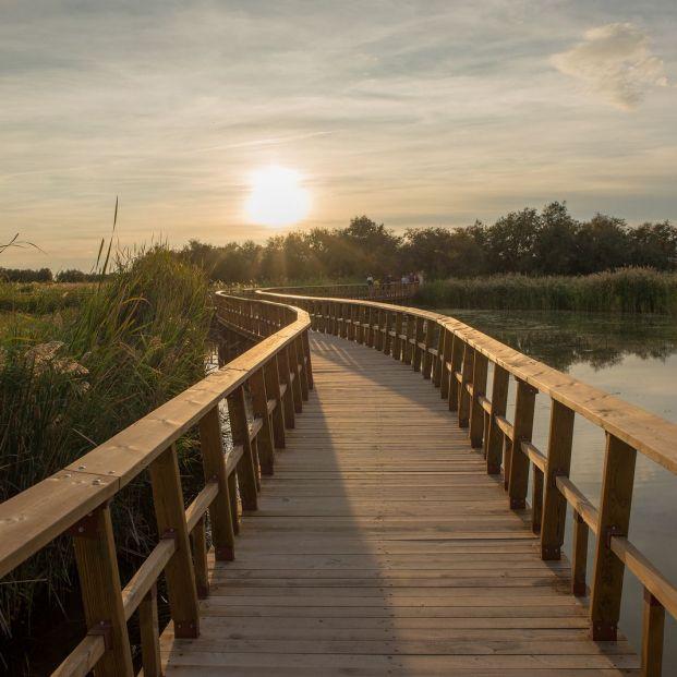 ¿Qué parques naturales de España no puedes perderte?