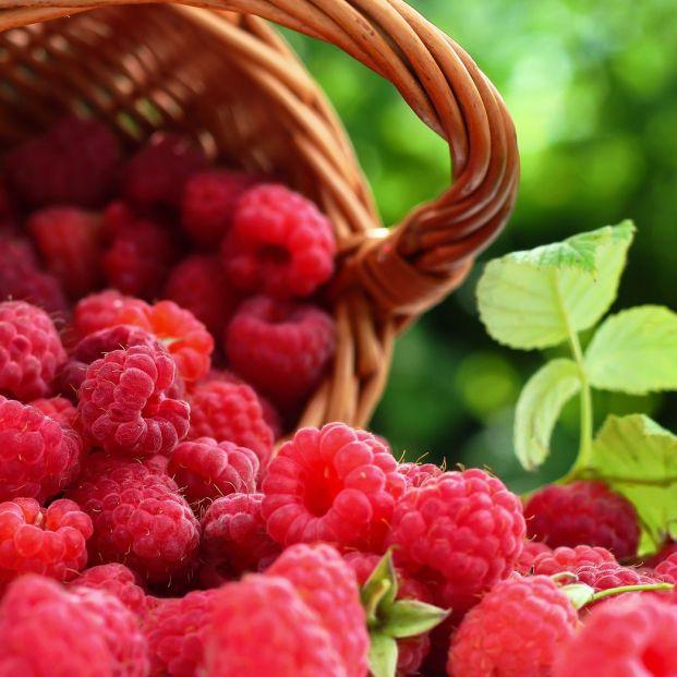 La frambuesa, una de las frutas más potentes contra el envejecimiento