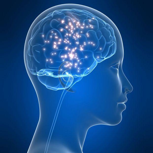 El ejercicio activa los circuitos cerebrales de las personas mayores