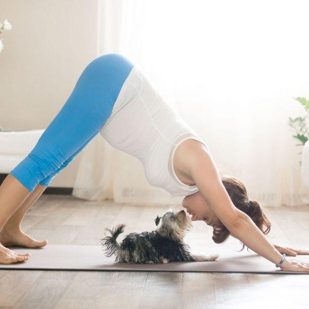 Descubre el Doga, el yoga que puedes practicar con tu perro