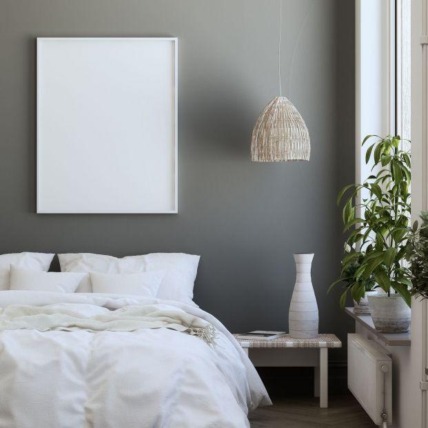 Si vas a pintar tu casa, estos colores serán tendencia en 2020