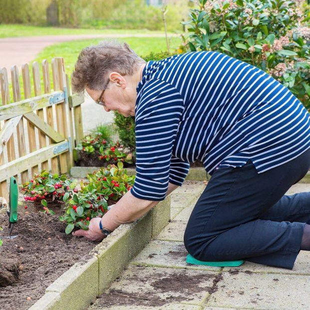 Cómo hacer tu propio abono orgánico en casa para tus plantas