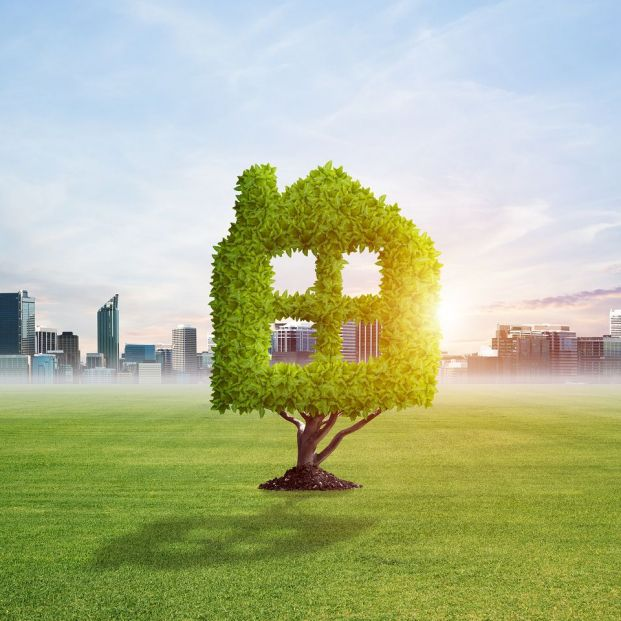 ¿Hacia dónde va la construcción de casas para que sean más ecosostenibles?