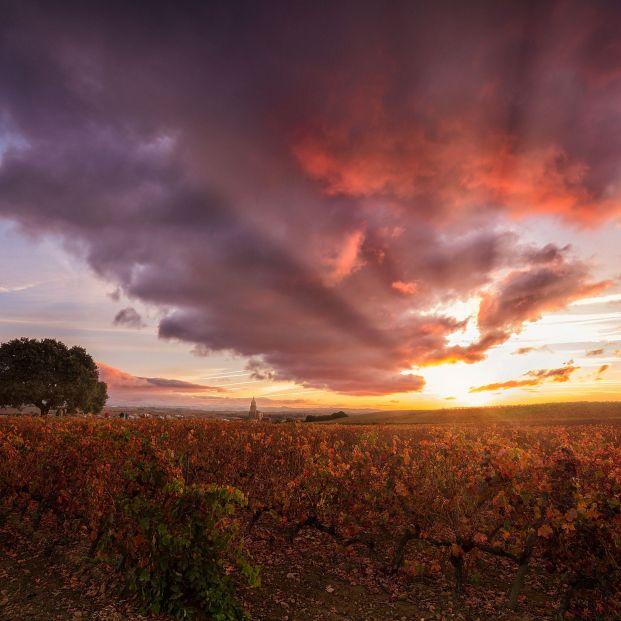 Escapa accesible a la Rioja Alavesa