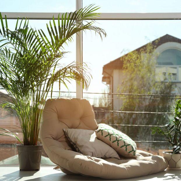 Cómo aislar tu casa del calor (y tenerla fresquita durante los días de verano)