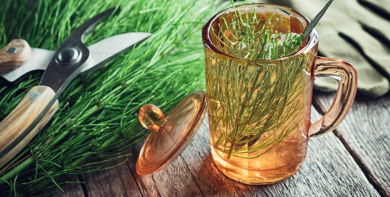Cola De Caballo Diurético Natural Con Efectos Secundarios