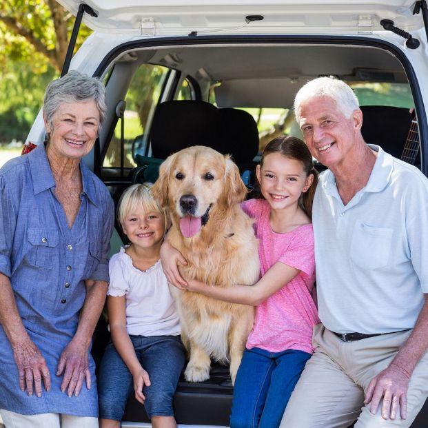 ¿Qué deberías dar de comer a tus nietos en un viaje largo de carretera?