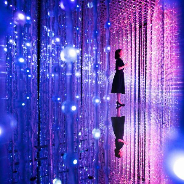 teamLab: la belleza del arte digital japonés