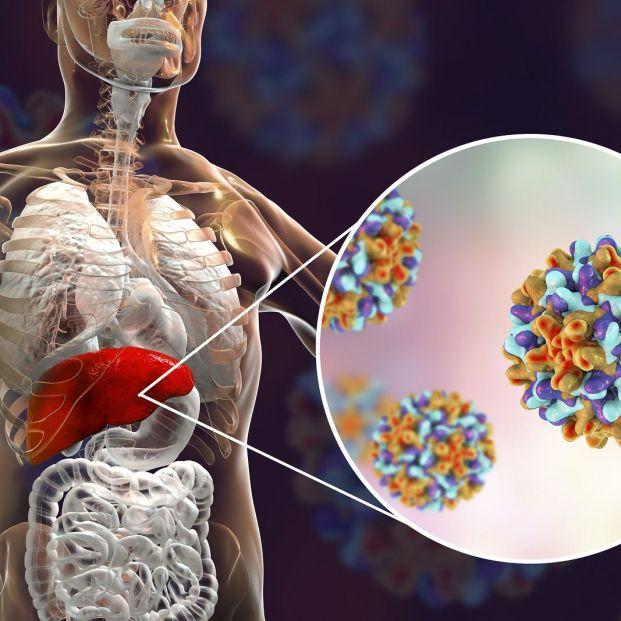 Cómo se contagia el virus de la hepatitis B