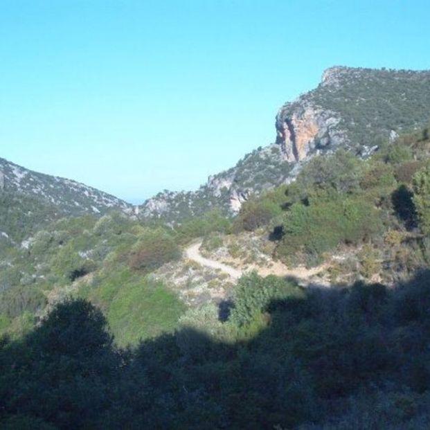 Ruta de senderismo por la Garganta Verde en Cádiz