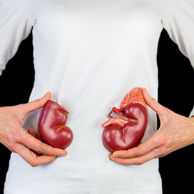 Dieta insuficiencia renal