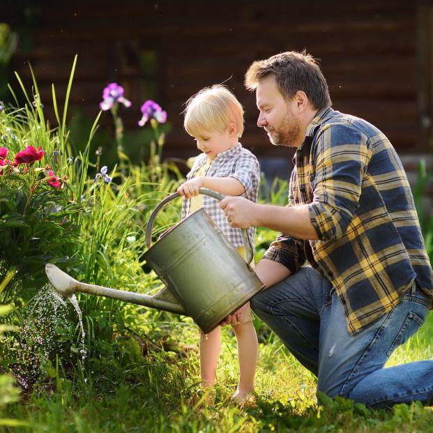 Los mejores sistemas de riego para tu jardín