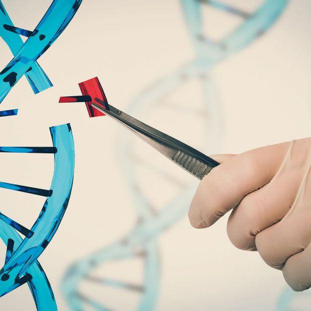 ¿Qué es la edición genética? Principales avances