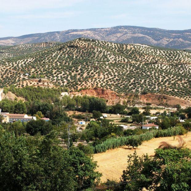 Desalojan una residencia de mayores de Córdoba