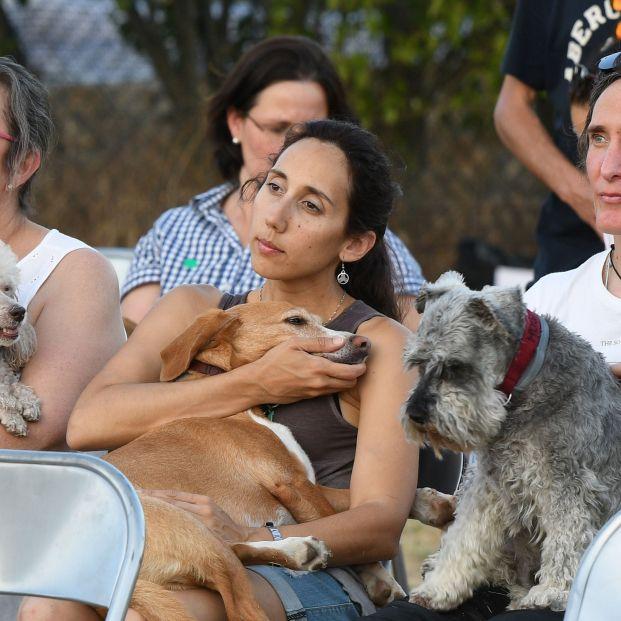 Soto del Real acoge el primer concierto para perros de España