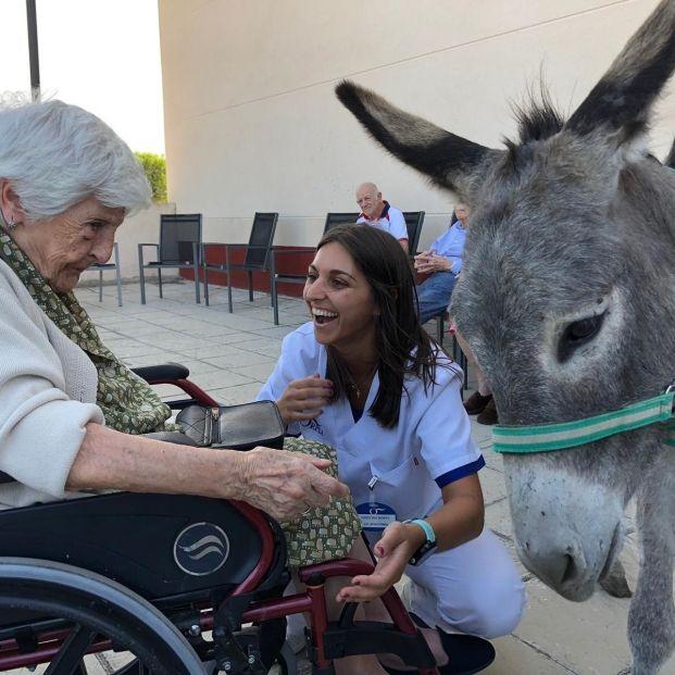 La Asociación Burrito Feliz entrena a burros como 'terapeutas' de enfermos de alzhéimer