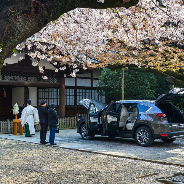 Japón impone el frenado automático en los coches de personas mayores