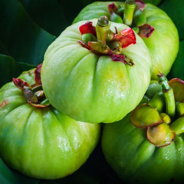 Garcinia cambogia: ¿realmente ayuda a perder peso?