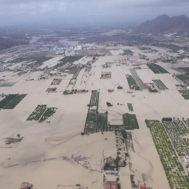 """Las lluvias más catastróficas en 140 años dejan al sector agrario de la Vega Baja """"arruinado"""""""