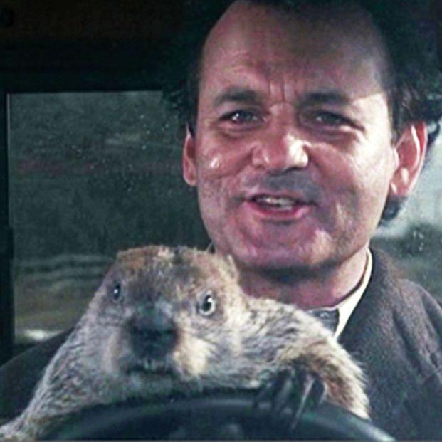 Nuevas elecciones generales: El día de la marmota