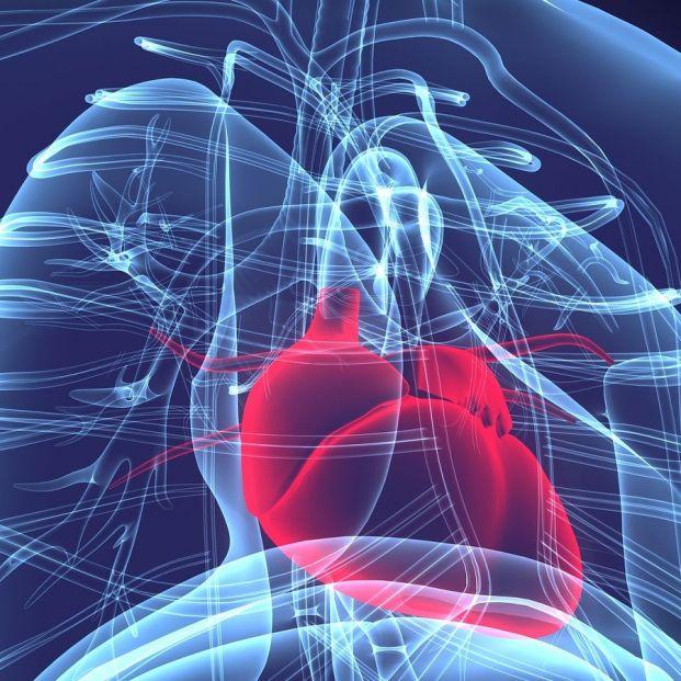 Crean un hidrogel que podría reparar el corazón