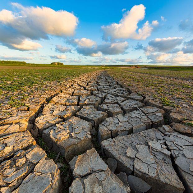 Unas 300 organizaciones se manifestarán en 70 municipios para exigir acción por el clima