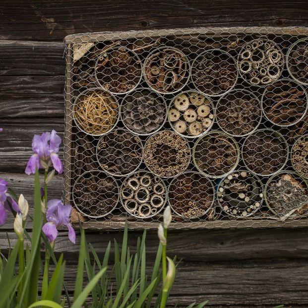 Cómo hacer un hotel de insectos beneficioso para tu huerta o jardín