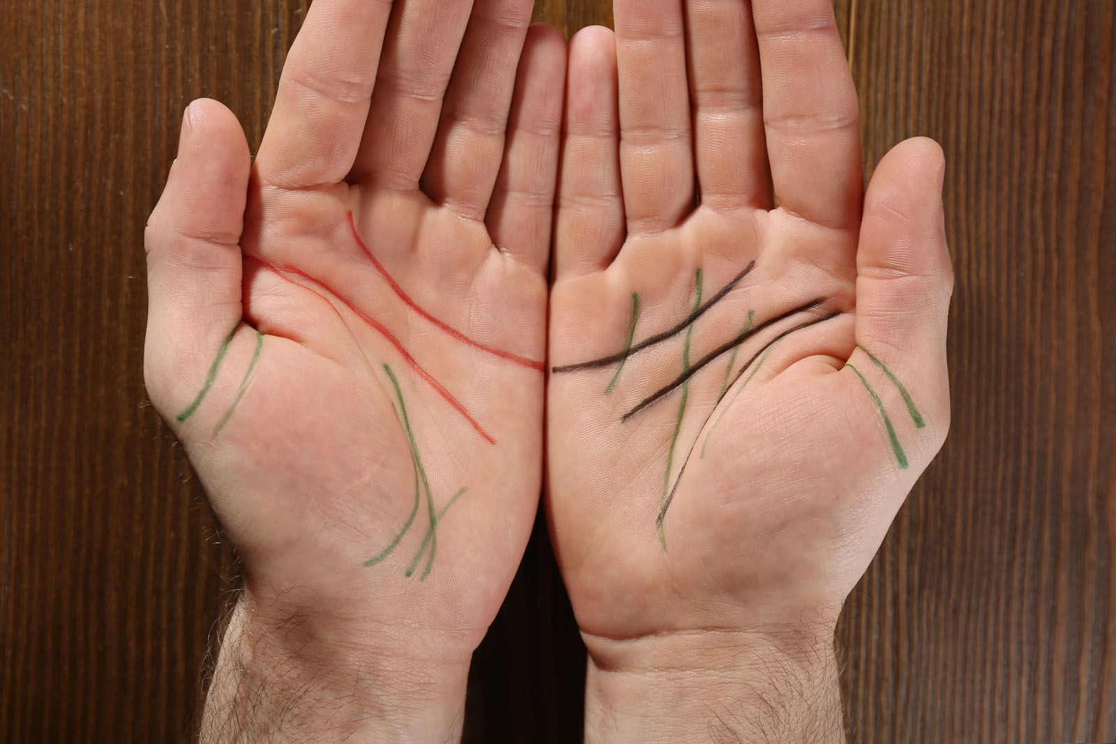 que-hay-de-verdad-en-la-lectura-de-las-lineas-de-las-manos