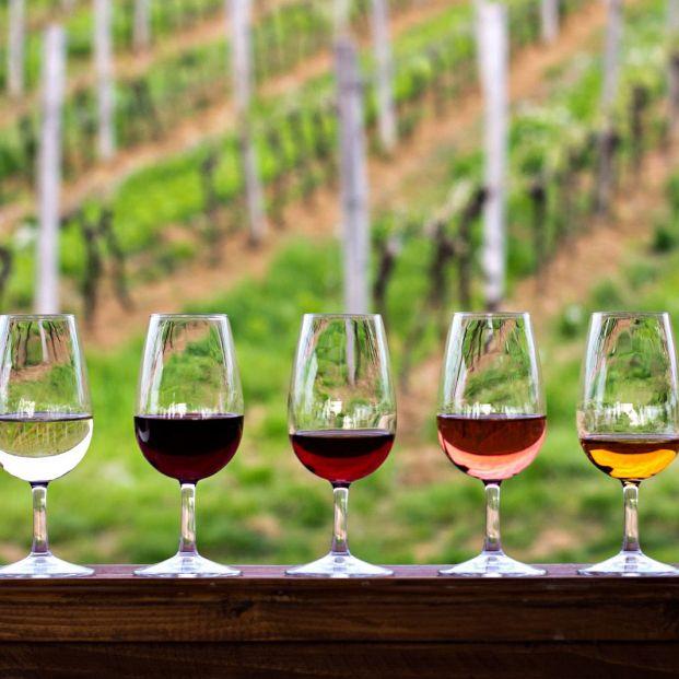 Qué significa la añada de un vino y cómo me afecta al comprarlo
