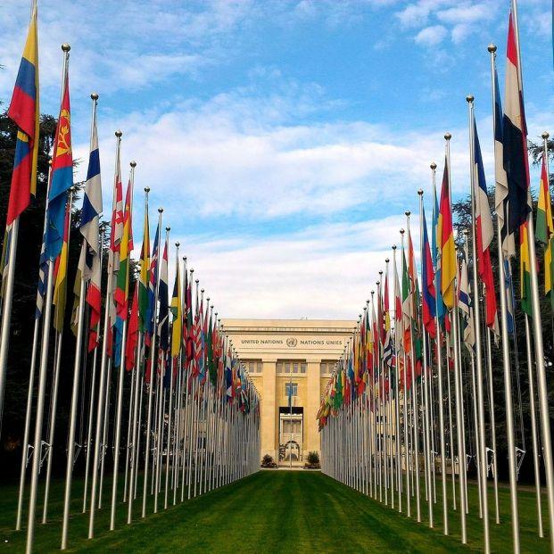 Hace 74 años se fundó la ONU: ¿sabes cuál es su función?