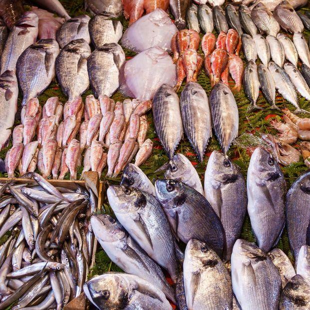 ¿El anisakis está en todo tipo de pescados? ¿Cómo evitar problemas con él?