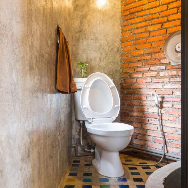 So entfernen Sie einen schlechten Geruch aus der Toilette