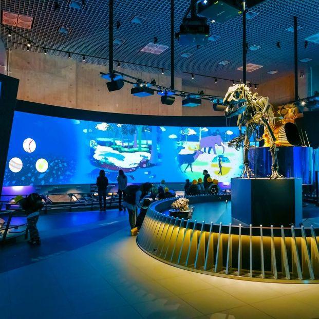 Museos curiosos (Bigtock)