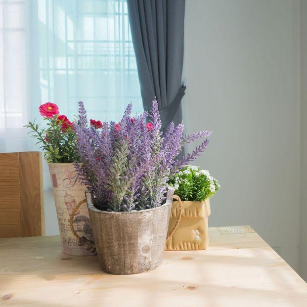 Trucos sencillos para que tu casa huela bien sin recurrir a los tradicionales ambientadores