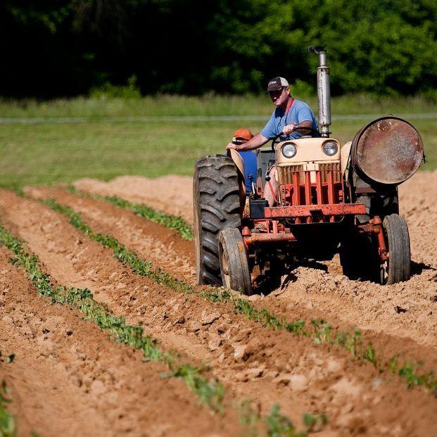 El 77% de los autónomos en zonas rurales son mayores de 59 años