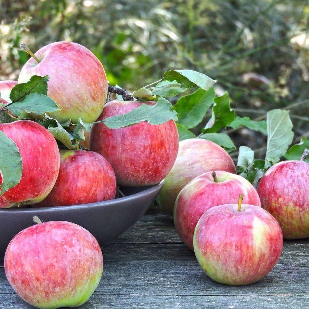 Platos y postres que puedes hacer para aprovechar las manzanas