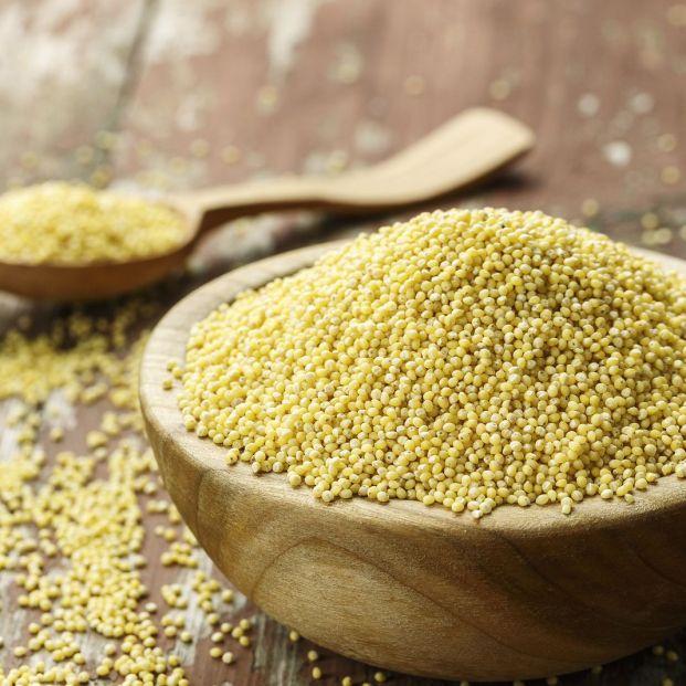 Mijo, el cereal para celíacos que recomiendan los expertos