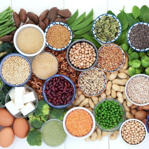 Cuáles son las principales fuentes de proteína vegetal para los mayores
