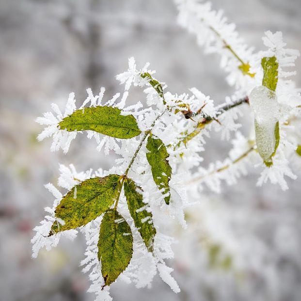 ¿Cuándo es el día más frío del año?
