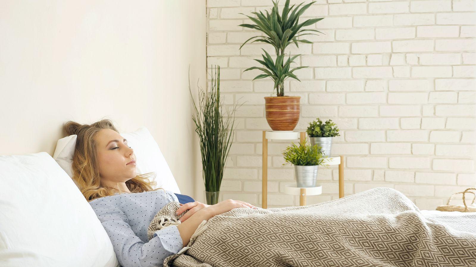 Las plantas te roban el oxígeno mientras duermes?