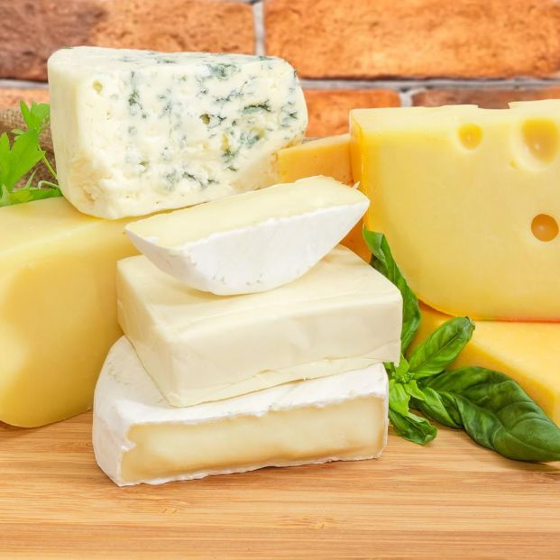 ¿Qué tipos de queso son más recomendables?
