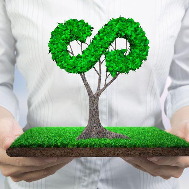 En qué consiste la economía circular cómo podemos formar parte de ella