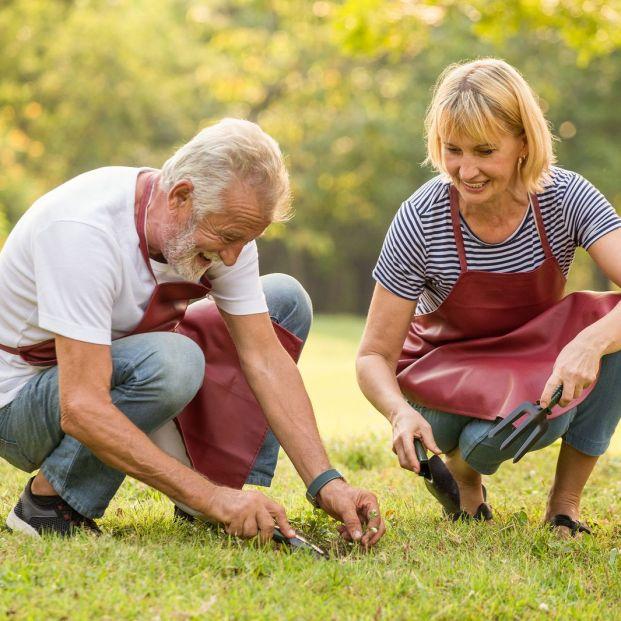 Herramientas imprescindibles para los amantes de la jardinería